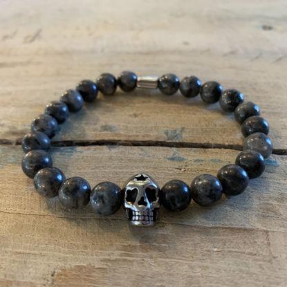 Afbeeldingen van Grey Skull