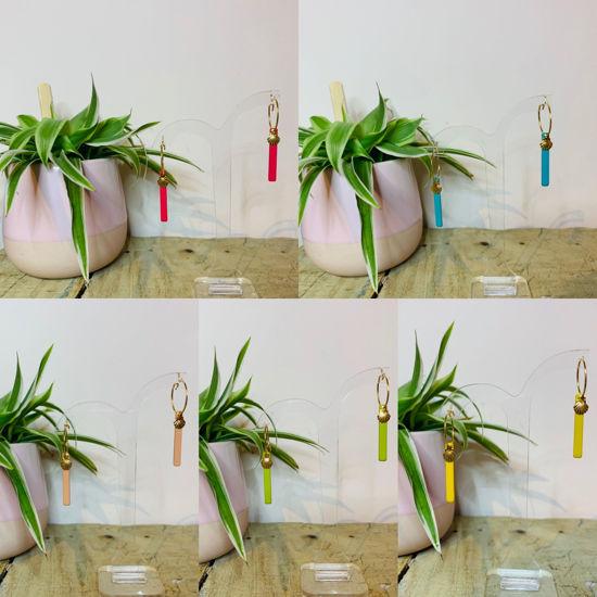 Afbeeldingen van Concha colorida